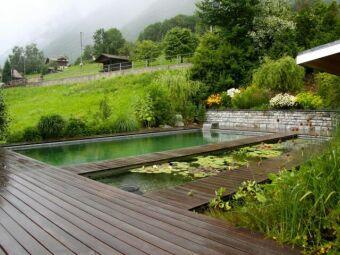 10 bonnes raisons d'opter pour une piscine naturelle