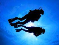 10 raisons de faire de la plongée cet été
