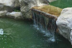 Débordement espace baignade sur bassin à poissons