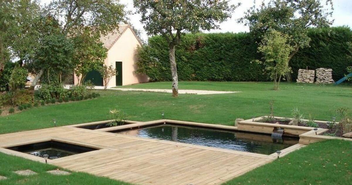 bassins de baignade biologiques et cologiques rectangulaires piscine naturelle photo 6. Black Bedroom Furniture Sets. Home Design Ideas