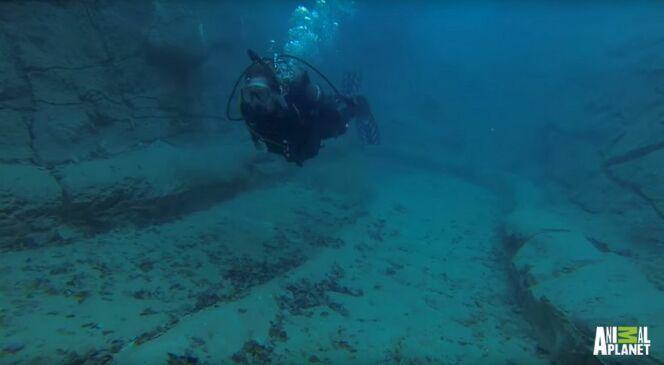 42m de large, 18m de long et 8m de profondeur : la piscine idéale pour pratiquer la plongée !