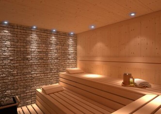 "Acheter son sauna sur internet<span class=""normal italic petit"">© Damirkol - Fotolia</span>"