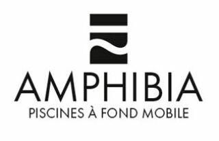 Logo Amphibia