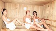 Ionisateur pour sauna