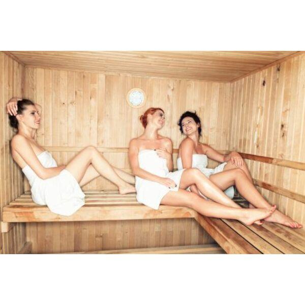 Ionisateur pour sauna - Bienfaits du sauna ...