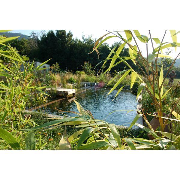 Piscine avs luberon saignon pisciniste vaucluse 84 for Destock piscine