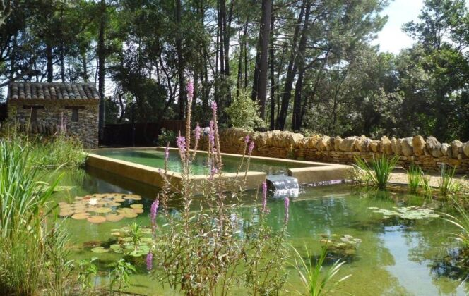 Baignade naturelle avec étang séparé DR