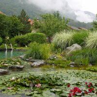 Bassin paysagé au coeur des montagnes BioNova