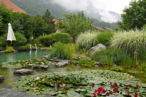 "Bassin au coeur des montagne BioNova<span class=""normal italic petit"">© BioNova</span>"