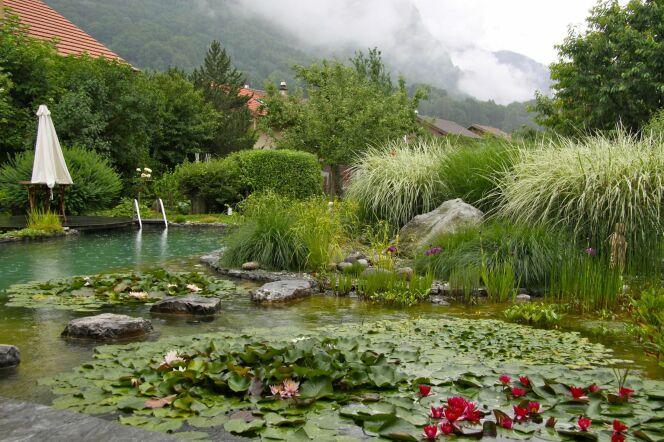 Bassin au coeur des montagne BioNova