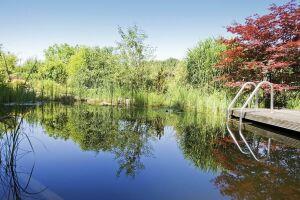 Bassin de baignade forme libre BIOTOP - Baignade écologique