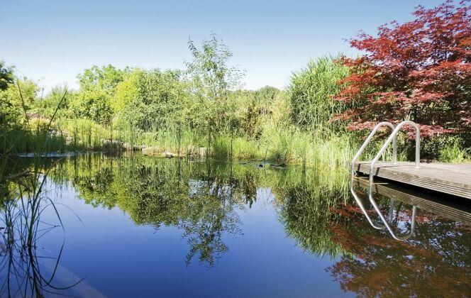 Bassin de baignade forme libre BIOTOP - Baignade écologique © BIOTOP - www.baignade-ecologique.com