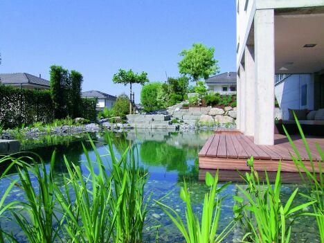 "Bassin de baignade naturelle avec terrasse en bois BioTop<span class=""normal italic petit"">© BIOTOP - www.baignade-ecologique.com</span>"