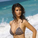 Bikini imprimé Wildlife par LingaDore