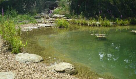 Cascade et étang