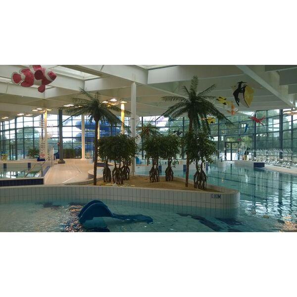 Horaire piscine vannes for Piscine surzur