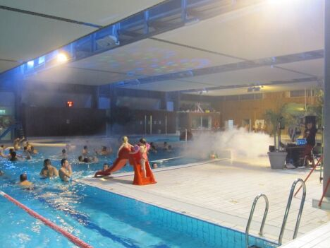 "Centre aquatique Aquamaris à Cordemais  <span class=""normal italic"">DR</span>"