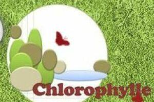 Chlorophylle à Presles