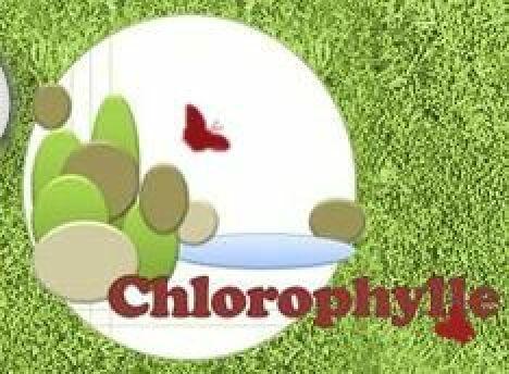 """Chlorophylle à Presles<span class=""""normal italic petit"""">© Chlorophylle à Presles</span>"""