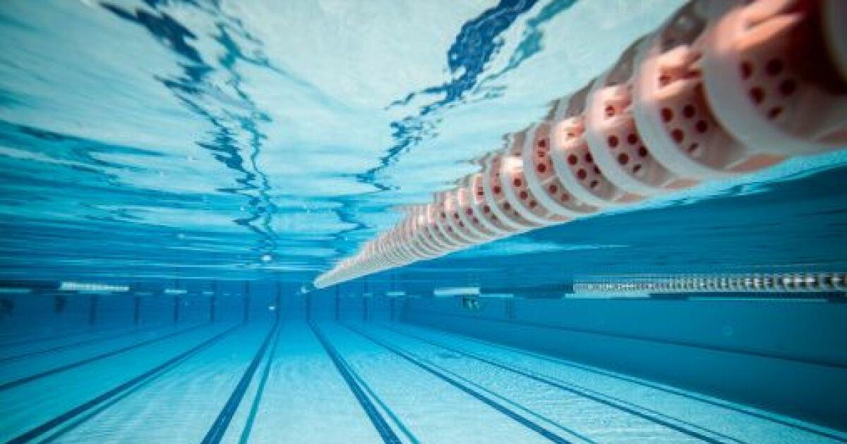 Comment participer des comp titions de natation for Club de natation piscine parc olympique