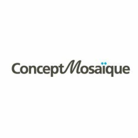 """Logo Concept Mosaique boutique de carrelage en ligne<span class=""""normal italic petit"""">DR</span>"""