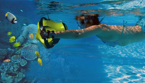 "Console interactive aquatique Dolphyn<span class=""normal italic petit"">© www.virtualdive.com</span>"