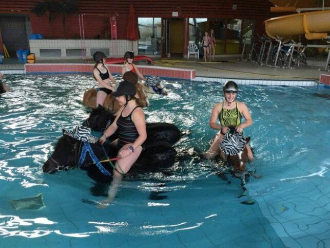 De l'aquaponey dans une piscine du Calvados !