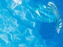 Le prix d'un aspirateur de piscine