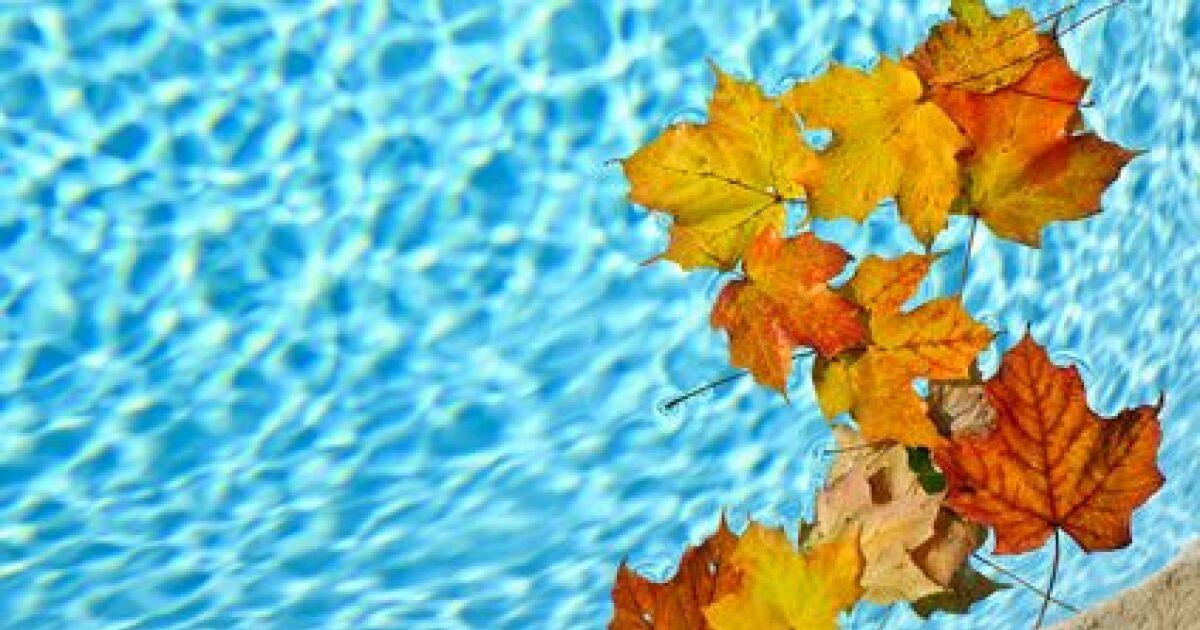 Comment enlever le d p t sale au fond de la piscine for Au fond de la piscine