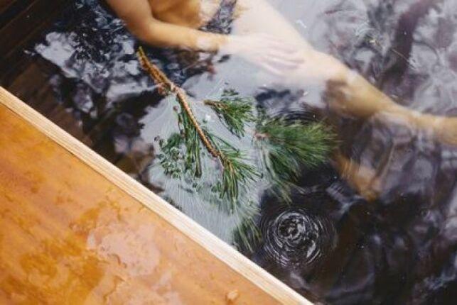 Des algues dans mon spa, que faire ?