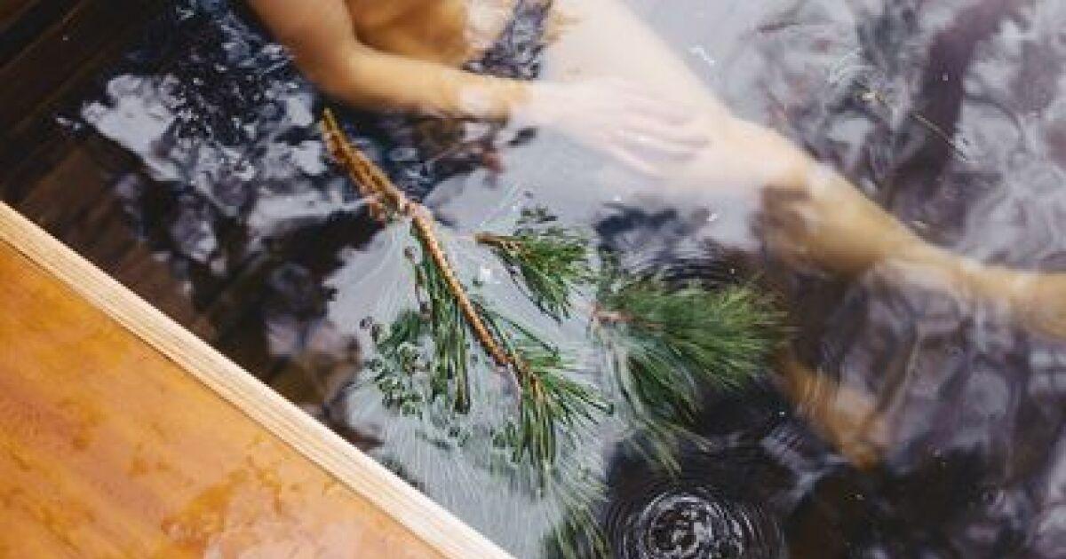 Des algues dans votre piscine comment les liminer - Anti algues piscine sulfate de cuivre ...