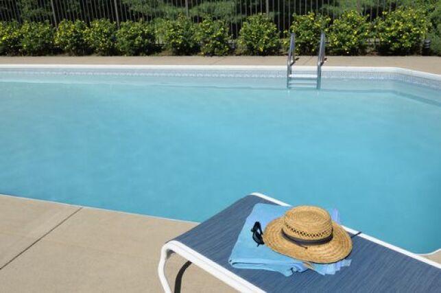 Des moustiques autour de la piscine