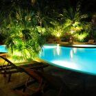 Des palmiers autour de la piscine