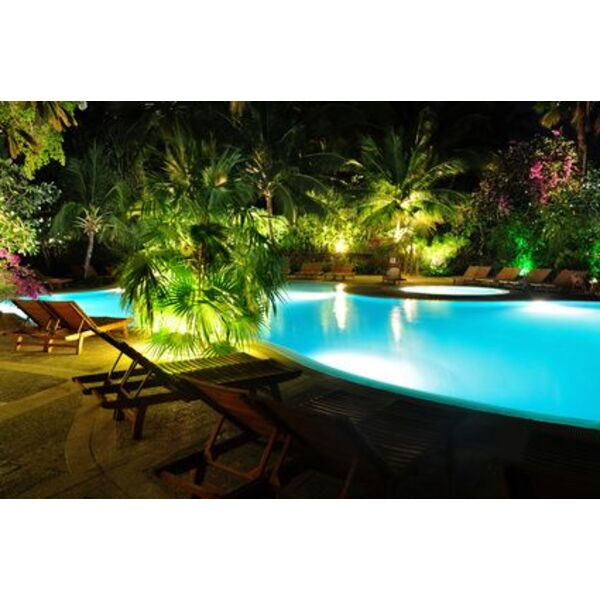 des palmiers autour de la piscine. Black Bedroom Furniture Sets. Home Design Ideas