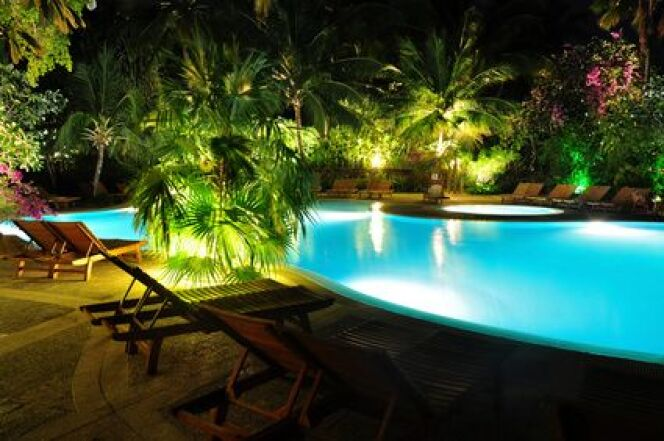 Des palmiers autour de la piscine - Piscine hyeres les palmiers ...