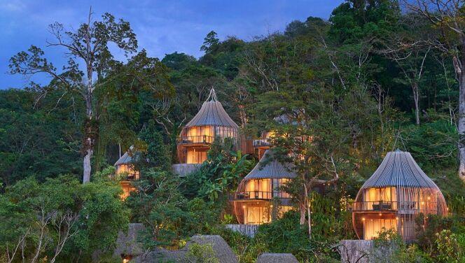 La maison dans l'arbre avec sa mini-piscine