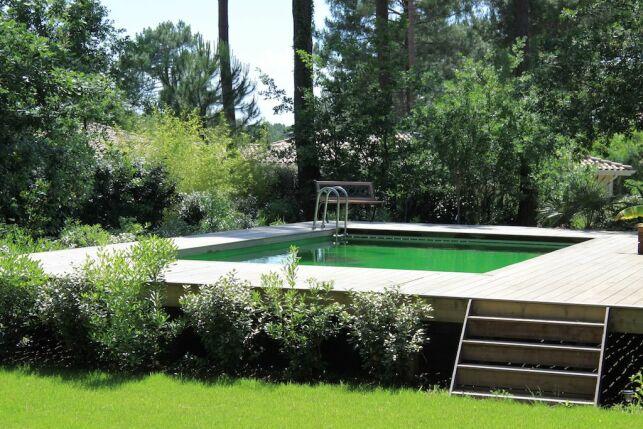 Dimension et taille d'une piscine naturelle