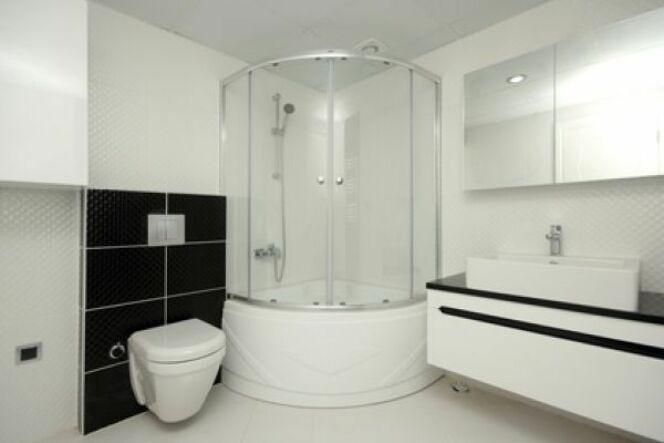 """La douche massante est un élément de bien-être facile à installer et prenant peu de place.<span class=""""normal italic petit"""">© Arsel - Fotolia.com</span>"""