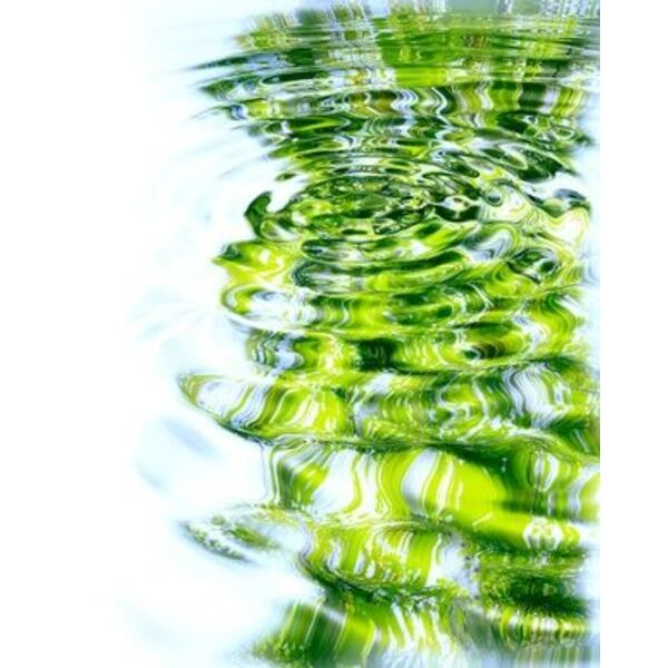 Piscine faure espaces verts lamagdelaine pisciniste for Espace vert 51