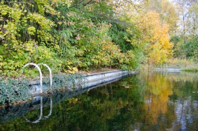 "Filtration biologique d'une piscine<span class=""normal italic petit"">© miriamvandamme - Thinkstock</span>"