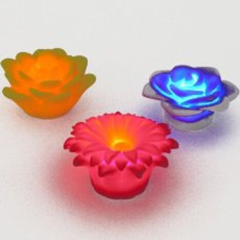 "Fleurs Lumineuses flottantes<span class=""normal italic petit"">DR</span>"