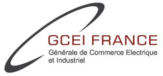 Logo GCEI France