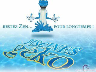 Logo Geko