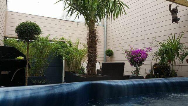 """Gites metropole """"Le jardin de Thailande"""" à Tourcoing"""