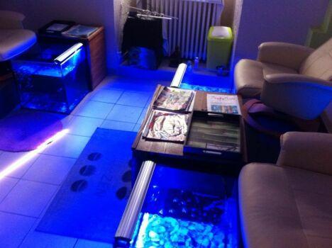 L'intérieur du Fish spa avec les fauteuils de soin et les bassins des poissons pédicures.