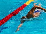 L'affûtage avant une compétition en natation