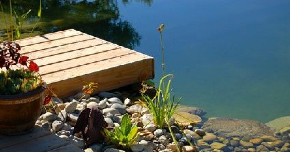 L autoconstruction d une piscine naturelle for Auto construction piscine