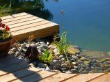 la construction d 39 une piscine naturelle installer un bassin biologique chez soi. Black Bedroom Furniture Sets. Home Design Ideas