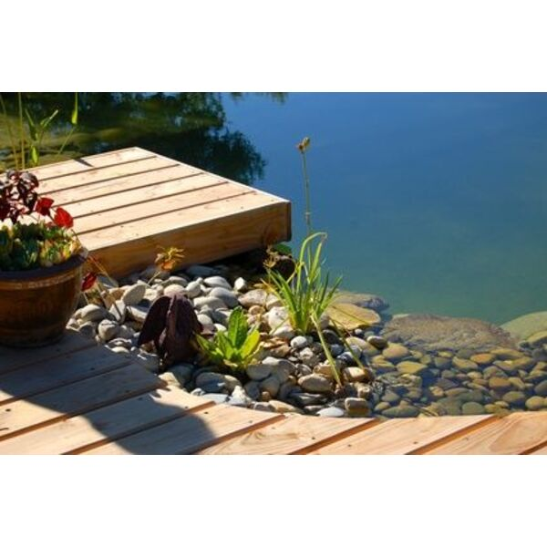 L autoconstruction d une piscine naturelle for Constructeur de piscine naturelle