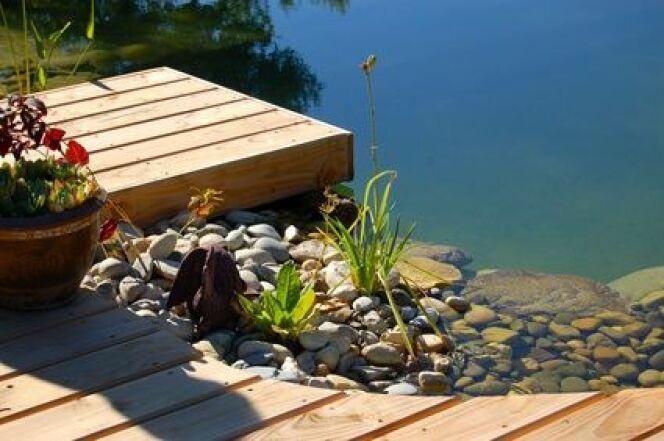 Une piscine naturelle auto construite coûtera moins cher qu'une piscine installée par des professionnels.